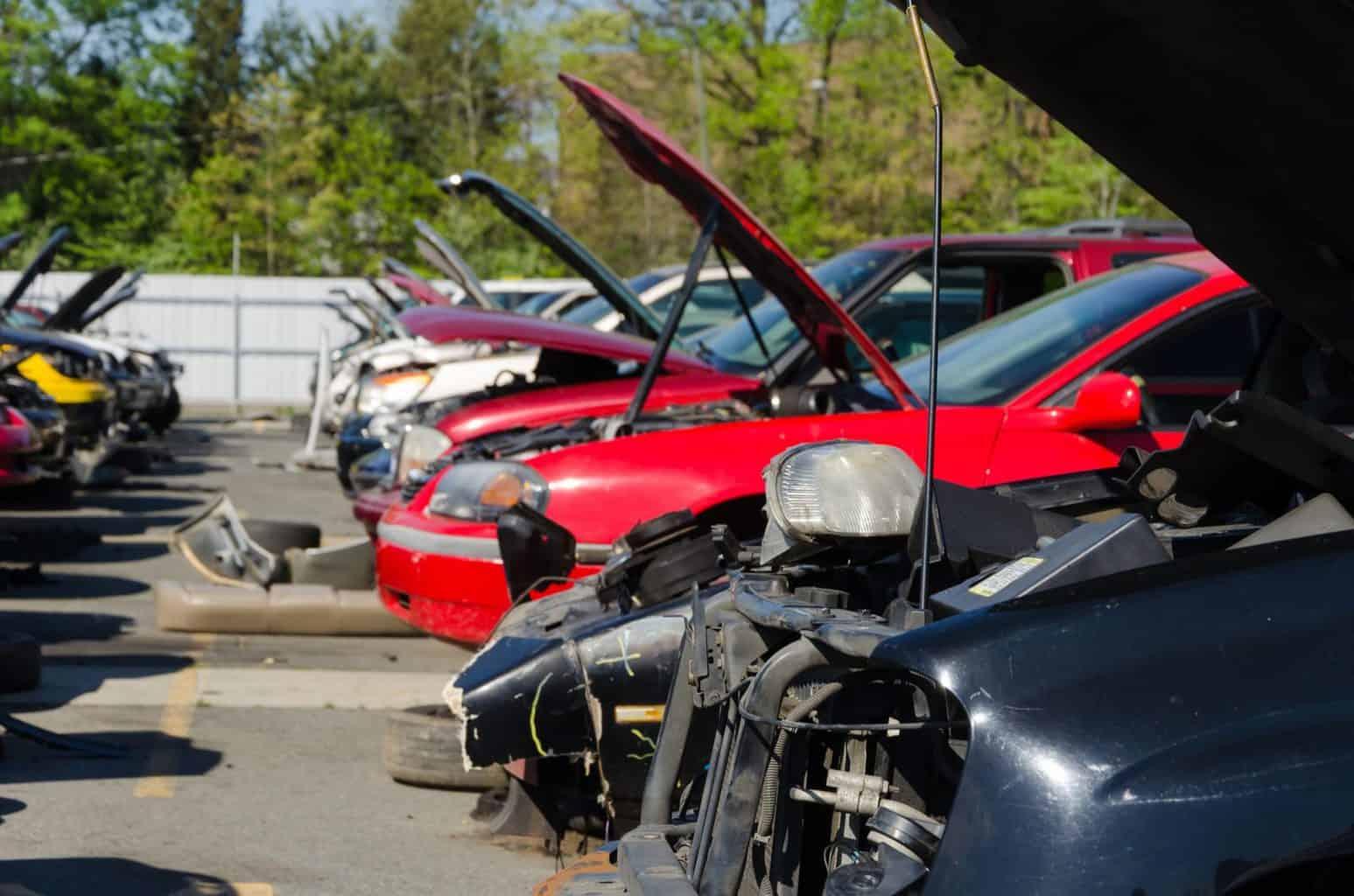 Cash for Cars Archives • Cash Auto Salvage